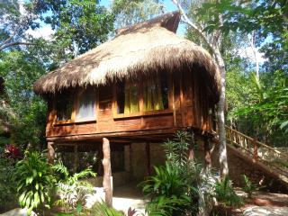chalet in the jungle - Tulum vacation rentals