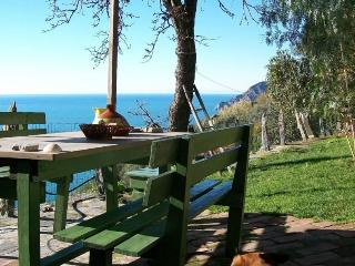 Leo's Lodge - The heart of Cinque Terre - Vernazza vacation rentals
