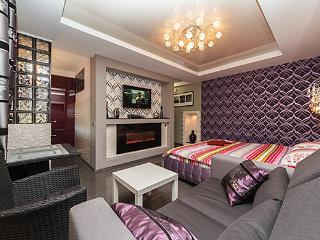 Deluxe Studio Jaccuzi Fireplace - Ukraine vacation rentals