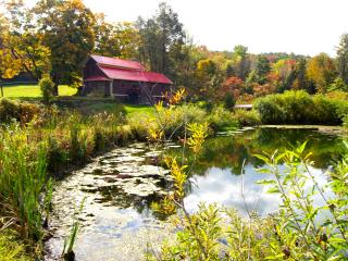 TWIN PONDS, Pet Friendly Vacation Rental on 20 ac - Pittston vacation rentals
