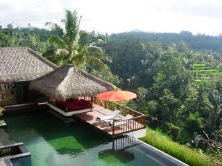 Comfortable Villa with Television and DVD Player - Nungnung vacation rentals
