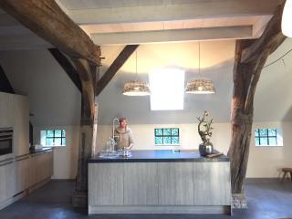 Beautiful renovated barn for 4-8 - Sleen vacation rentals
