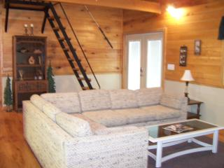 Charming House with A/C and Central Heating - Grove vacation rentals