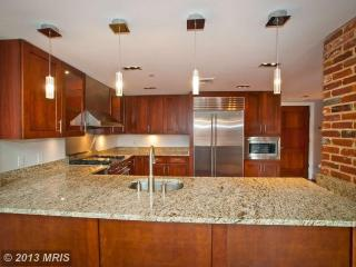 Penthouse W/Rooftop & Capitol View! - Northern Virginia vacation rentals
