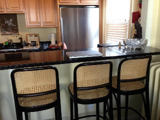 Convenient Condo with Internet Access and A/C - Somerville vacation rentals
