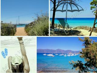 "Apartment T2 climatisé ""La Paghjella"" 2* Piscines - Santa-Maria-Poggio vacation rentals"