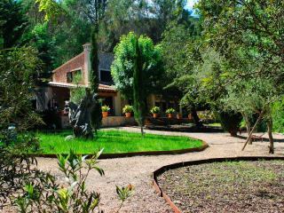 Villa Puigpunyent settled in a charming village - Puigpunyent vacation rentals
