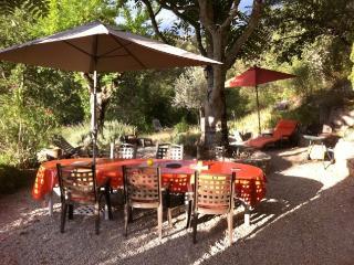 Vrai coin de Paradis en Provence avec rivière fi - Flayosc vacation rentals