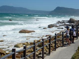 Sea Nest Cottage, Muizenberg, Cape Town, S. Africa - Muizenberg vacation rentals