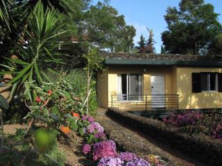 Nice Cottage with Internet Access and Satellite Or Cable TV - Livramento vacation rentals