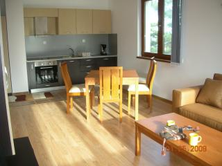 Perfect 1 bedroom Condo in Borovets with Central Heating - Borovets vacation rentals