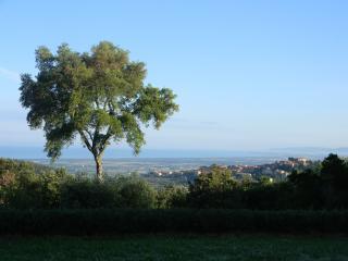 Villa in pietra vista mare con piscina - Castagneto Carducci vacation rentals