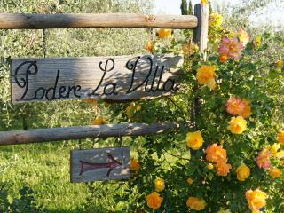 Dreamy Tuscan Farmhouse near Florence, Podere la V - San Casciano in Val di Pesa vacation rentals