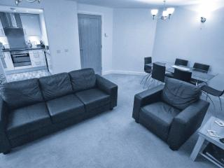 Modern Luxury Holiday Apartment in Salisbury City - Salisbury vacation rentals