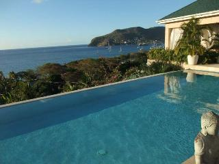 6 en-suite bedrooms, a large infinity pool private tennis court gym - Lower Bay vacation rentals