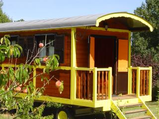 Nice Gite with Internet Access and Swing Set - Saint-Salvy vacation rentals