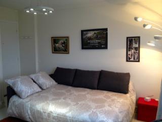 Cozy Caen Studio rental with Internet Access - Caen vacation rentals