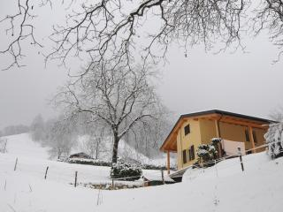 freestanding guesthouse in hamlet near ski area - Cassina Valsassina vacation rentals
