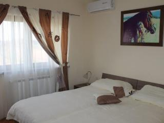 Vinia room Midnight Rain - Bjelovar vacation rentals