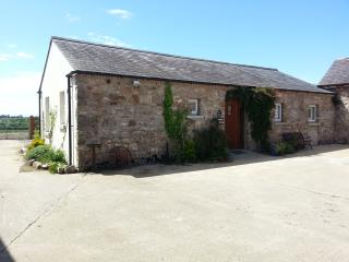 Bright 2 bedroom Armagh Barn with Internet Access - Armagh vacation rentals
