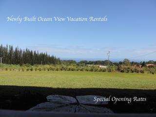 Mahana House Suite 3 - Hilo District vacation rentals