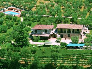 Nice Cottage with Internet Access and Wireless Internet - Petrignano d'Assisi vacation rentals