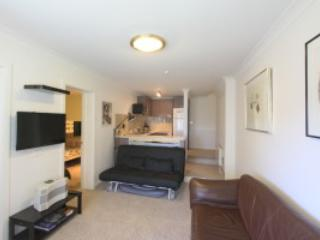 Beehive 17B - Mt Buller vacation rentals