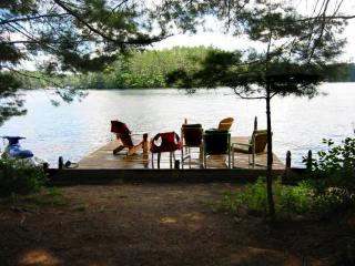 Grant Island Cottage - Perfect for Dog Owners! - Brantingham vacation rentals