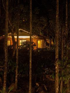 Perfect 3 bedroom Cottage in Vythiri - Vythiri vacation rentals