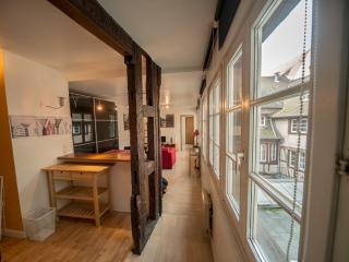 A charming apartment in the centre of Strasbourg - Strasbourg vacation rentals