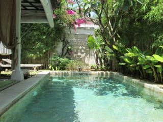 Villa Shanti - Seminyak vacation rentals