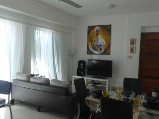 Hermoso Apartamento Renta semanal - Santo Domingo vacation rentals