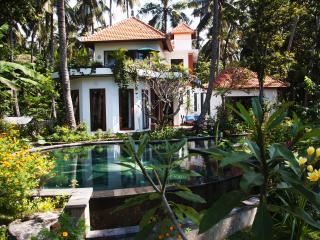 Surya and Chandra Bali Resort Fully Catered Pax 9 - Candidasa vacation rentals