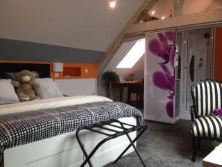 1 bedroom Bed and Breakfast with Internet Access in Nord-Pas-de-Calais - Nord-Pas-de-Calais vacation rentals