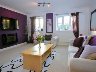 PARVI - Bideford vacation rentals