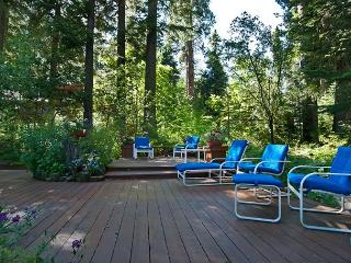 Lake View Home on the West Shore with Awesome Outdoor Space and Buoy!!! - North Tahoe vacation rentals