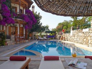 Villa Vali Dönence - Akyaka vacation rentals