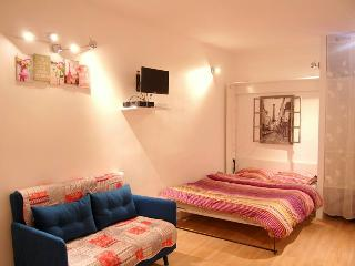 Cosy studio in the heart of Paris - Paris vacation rentals