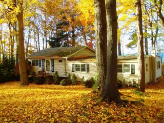Arcturus Cottage - Greater Niagara vacation rentals