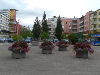 City  style  flat / Best & Cheap - Espoo vacation rentals