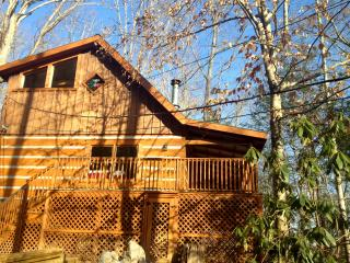 Cozy Cabin with Deck and Internet Access - Townsend vacation rentals