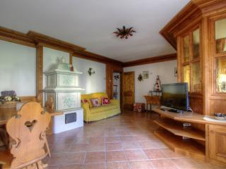 Near Cortina : Al Taulà Great Dolomites - Vodo Cadore vacation rentals