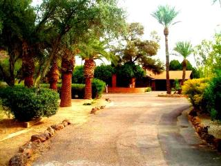 Lovely Mid-Century Ranch - Scottsdale vacation rentals