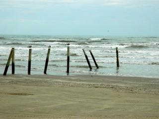 Ocean View Condo in Galveston - Sleeps 6 - Galveston vacation rentals