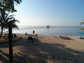 Direct Ocean Front White Sand Beach Rentals - Bay Islands Honduras vacation rentals