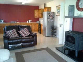 Holiday home - Tulla vacation rentals
