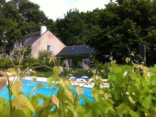 Lovely 1 bedroom Blaison-Gohier B&B with Local Guides - Blaison-Gohier vacation rentals