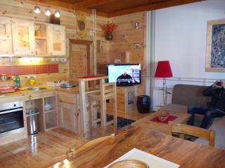 Nice Cottage with Internet Access and Alarm Clock - Kolasin vacation rentals