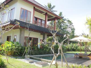 Villa near Monkey Forest Ubud - rice field - Mas vacation rentals