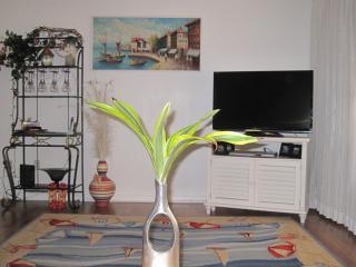 1 bedroom Condo with Internet Access in Palm Harbor - Palm Harbor vacation rentals